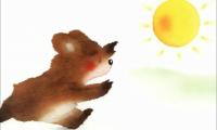 太阳哪里去了:多媒体课件动画制作
